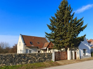 Pszichológiai magánrendelés Veszprém megyében
